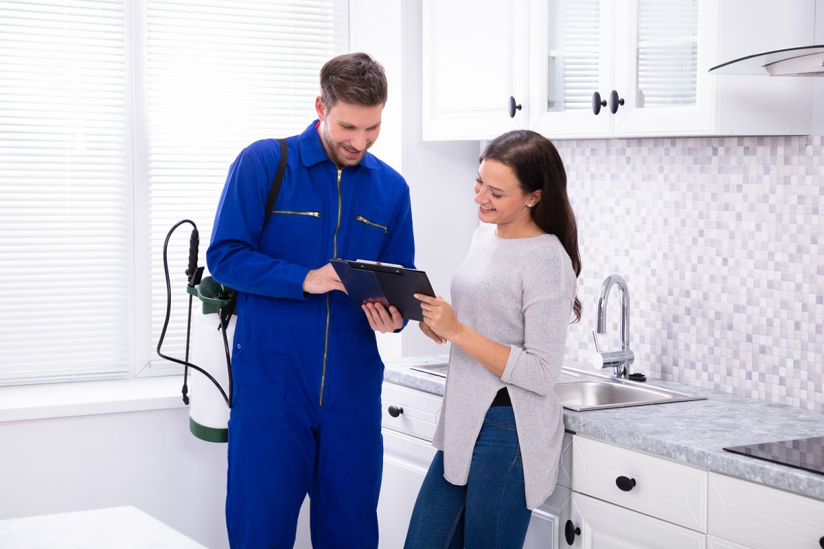 Things to Look Out for When Hiring a Pest Control Professional